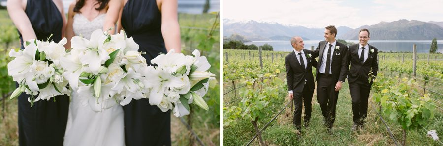 A wanaka wedding couple and their bridal party in the vines at Rippon Vineyard at her Wanaka Wedding, with photography by Alpine Image Company