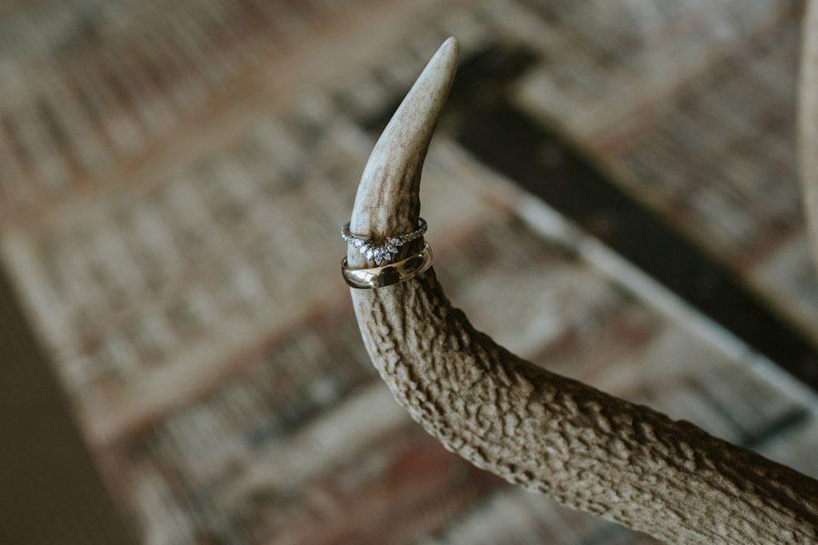 Close up of beautiful wedding rings