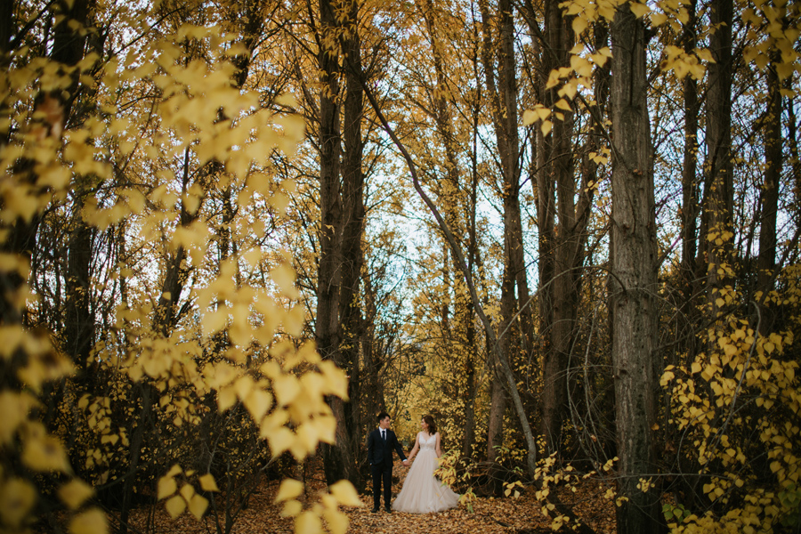 Here are Jamie and Eric standing among the Autumn colours on their Wanaka wedding day.