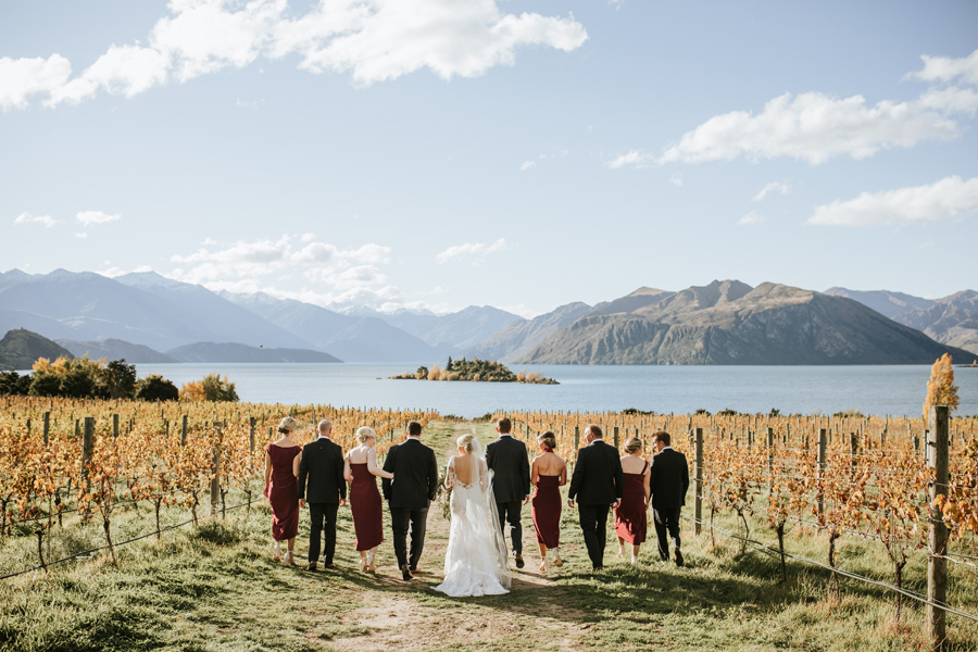 Anna and Nick and their bridal party walk away from the camera through a gap in the vines at Rippon Vineyard. The view is beautiful, with Lake Wanaka and mountains in the distance. With photography by Alpine Image Company