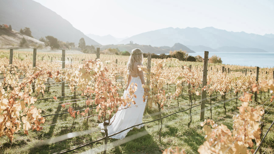 Estelle walking through the vines at Rippon Vineyard on her Wanaka wedding day. Photographed by Wanaka wedding photography studio, Alpine Image Company.