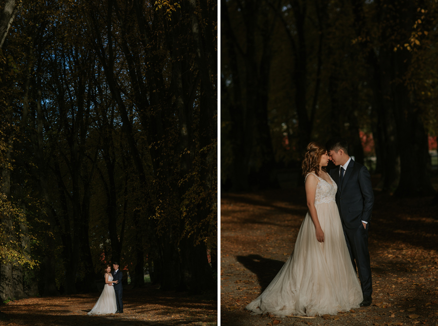Jamie and Eric catching a bit of light in the trees on their wanaka wedding
